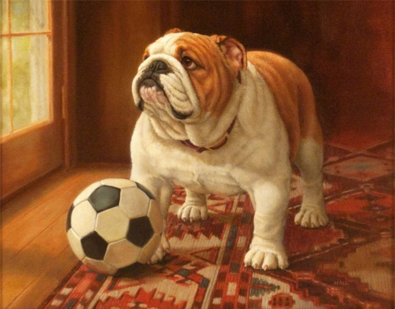 """""""Ready to Play,"""" by Pamela Hall, is part of the Morris Museum's exhibit, """"The Dog Show: The Art of Our Canine Companions."""""""