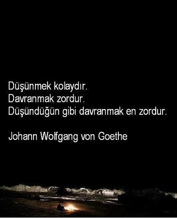 Goethe Resimli Sözleri