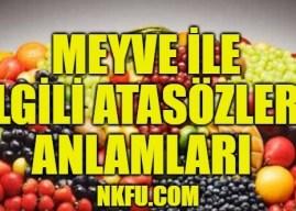 Meyve İle İlgili Atasözleri ve Anlamları Açıklamaları – İçinde Meyve Olan