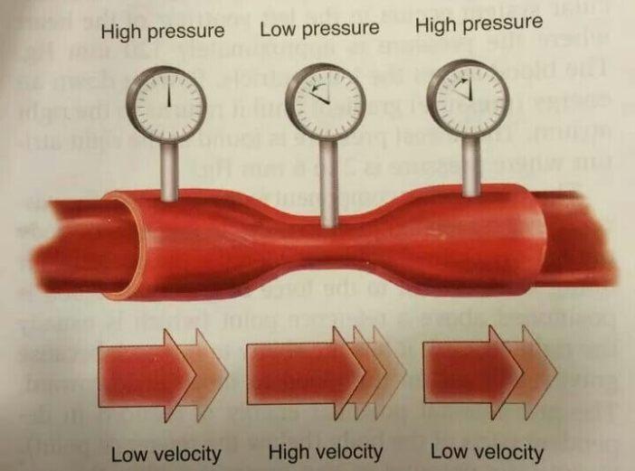 Bernoulli Denklemi kan akışı