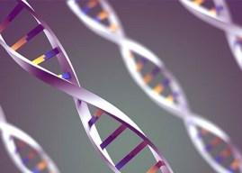DNA ve Genetik Kod İle İlgili Etkinlikler