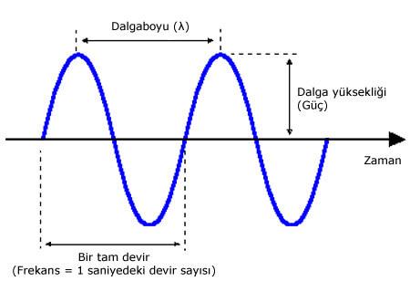 Dalgaboyu