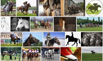 Atçılık ve Antrenörlüğü Taban Puanları