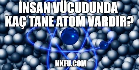 İnsan Vücudunda Kaç Atom Vardır?