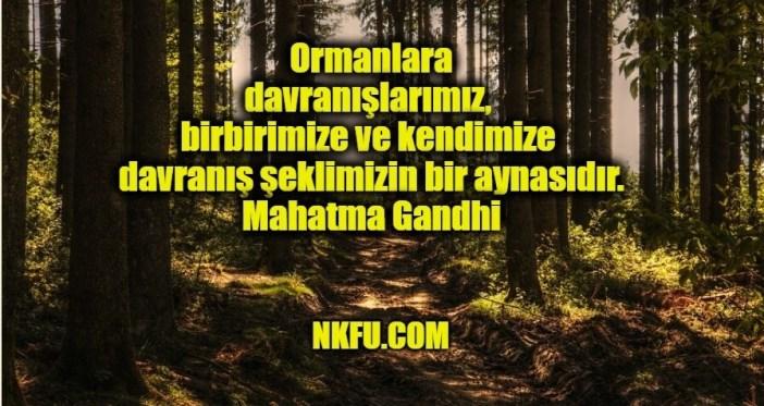Orman Haftası İle İlgili Sözler