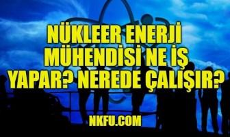 Nükleer Enerji Mühendisi