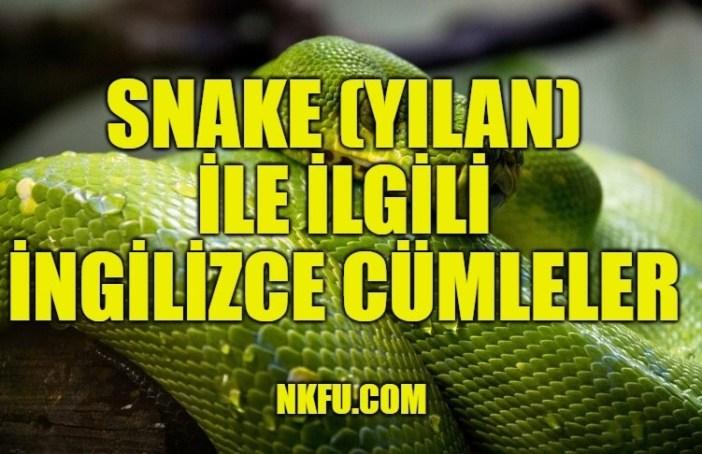 Snake (Yılan) İle İlgili İngilizce Cümleler