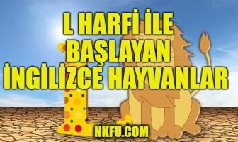 L Harfiyle Başlayan İngilizce Hayvanlar