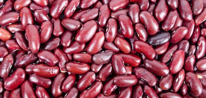 kırmızı fasulye
