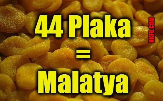 44 plaka malatya