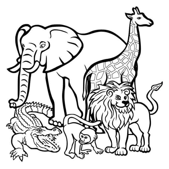 Hayvanlari Koruma Gunu Boyama Sayfasi Anaokulu Ve Ilkogretim Icin