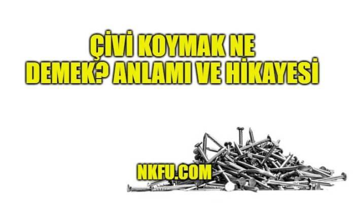 Çivi Koymak