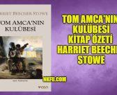 Tom Amca'nın Kulübesi Kitap Özeti Karakterler ve Konusu – Harriet Beecher Stowe