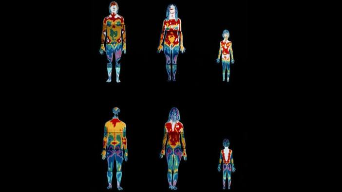 insan vücudunda ısı transferi