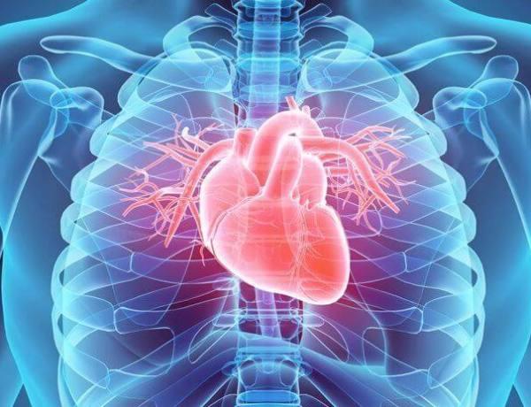 Aort Kapak Darlığı (Stenozu) Nedir? Nedenleri Belirtileri Riskleri ve Tedavisi