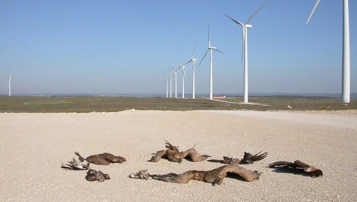 rüzgar türbini çevreye etkisi