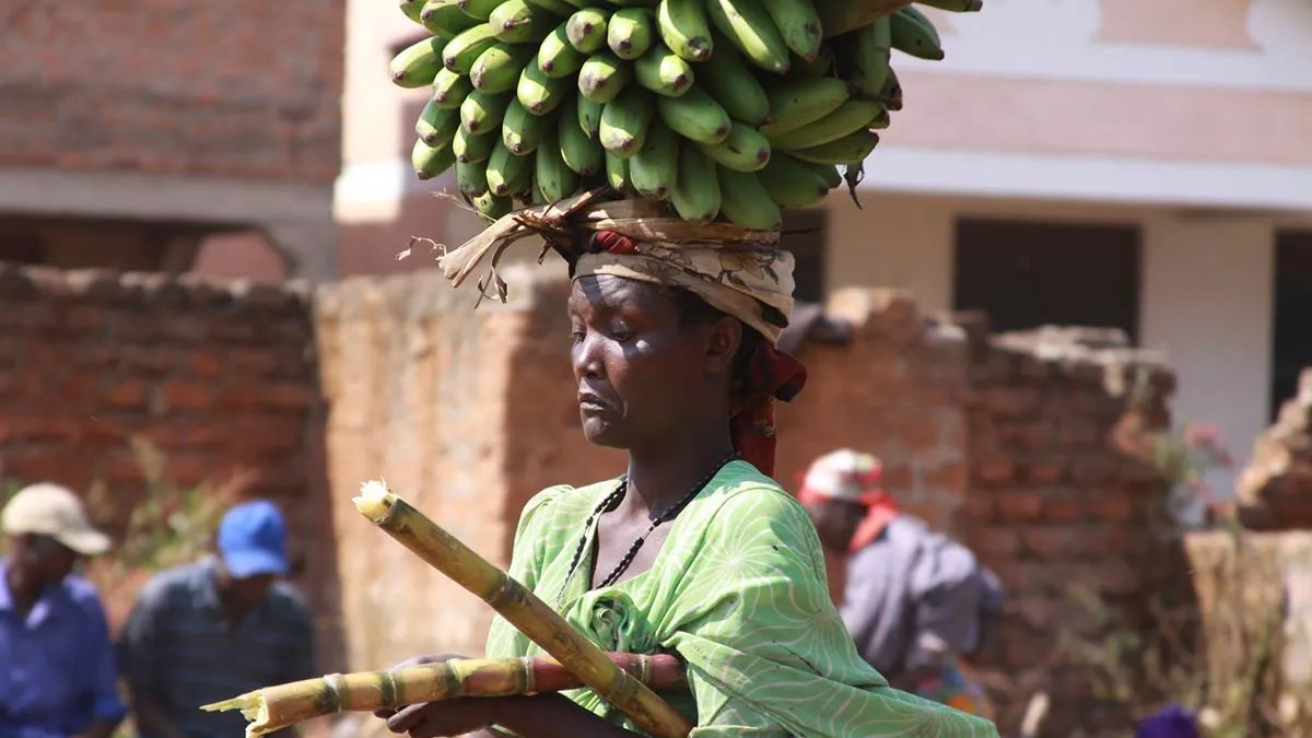 Basic Facts About Uganda