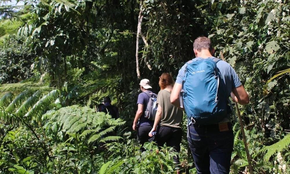 flora and fauna uganda