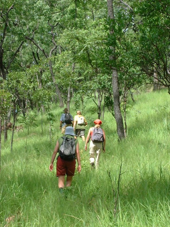 activities-11 Walking through the Manda Wilderness Reserva