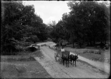 Scene in Natchitoches, Louisiana, USA, 1910s. Photo by Dutch photographer P. H. van Son who lived and worked in Louisiana in the early 20th century.