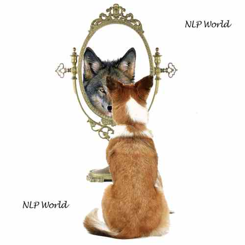 perceptions-nlp-world