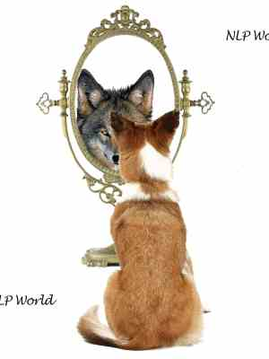 perceptions-nlp-world