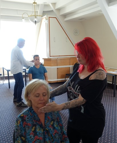 master practitioner hypnosis