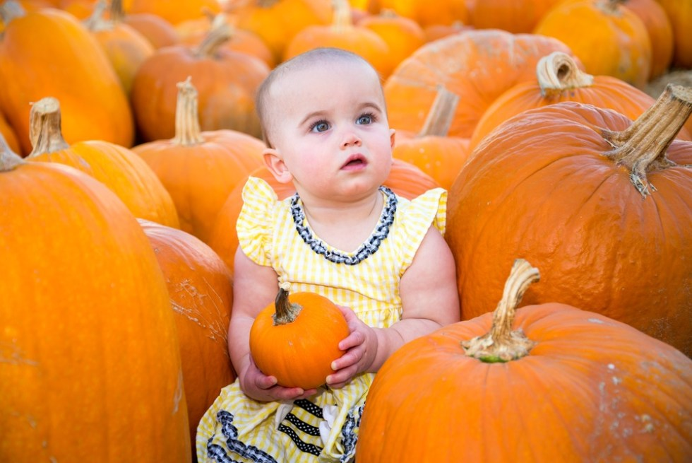 Baby in pumpkin patch for baby's 1st Halloween