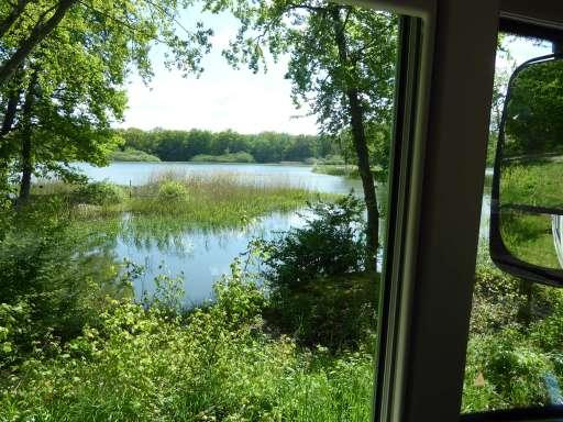 Ruisseau9