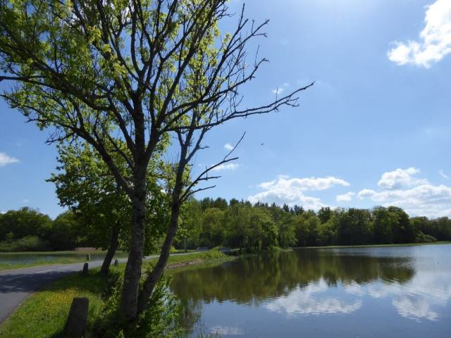 Ruisseau3