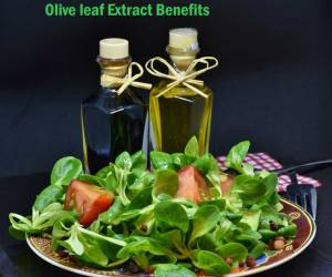 8 Amazing Olive Leaf Extract Benefits for Heuman