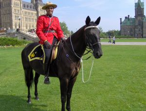 jesus the mountie