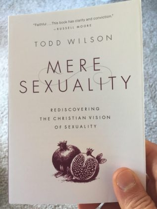 the flip side book club, noah filipiak, podcast, todd a wilson, mere sexuality, book club