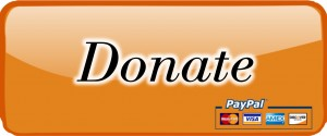 Donate to Girls Night Out To Fight MS