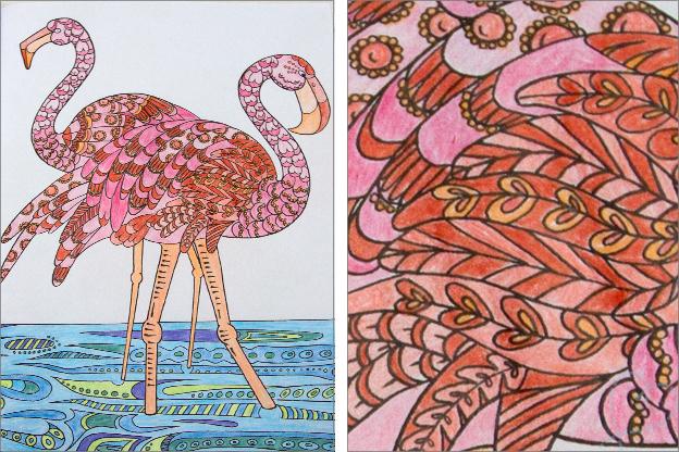 Voorbeelden Creatief Kleurboek Voor Volwassenen Nobody