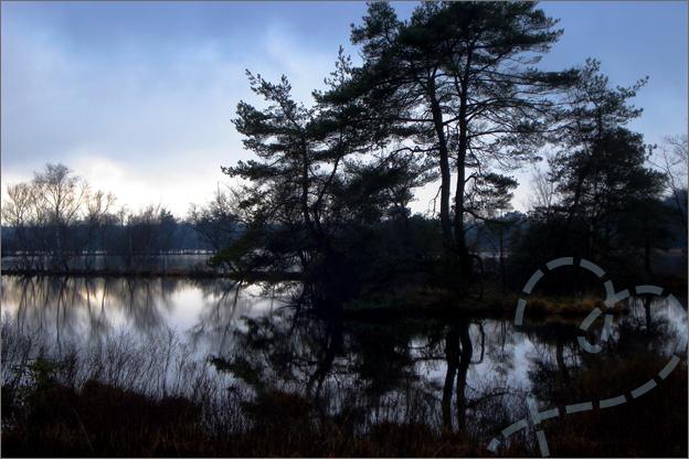 bos meer foto