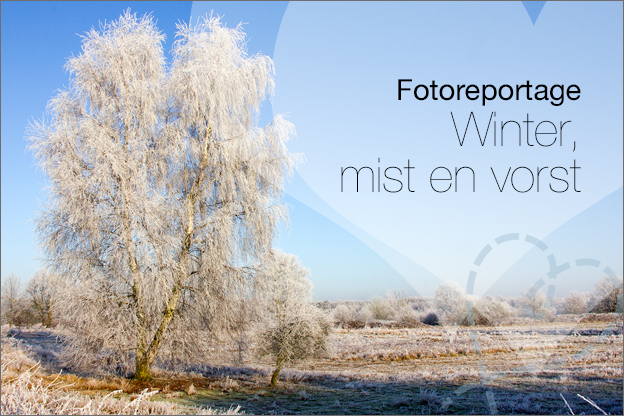 foto's winter landschap vorst mist