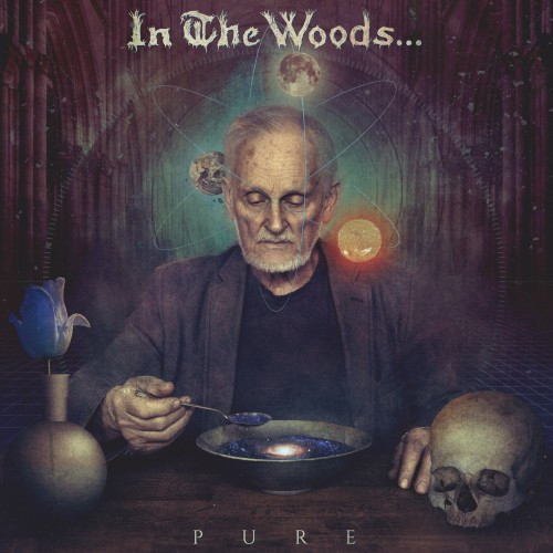 Image result for in the woods pure