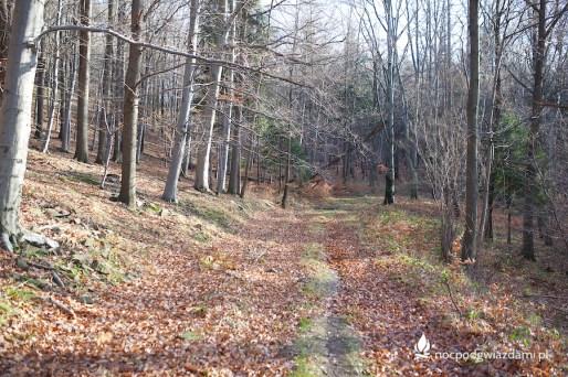 Szlak Brzeżny (Krawędziowy) odcinek przez Mniejszy Las