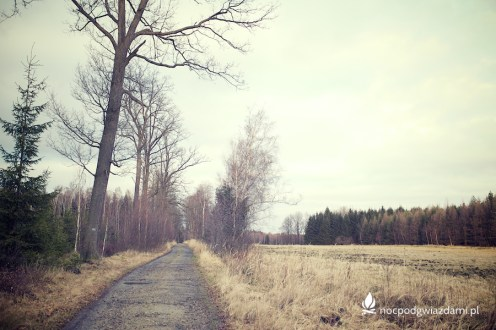wawoz-mysliborski-19
