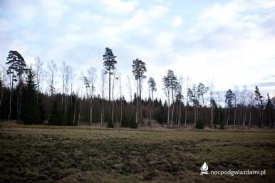 wawoz-mysliborski-20