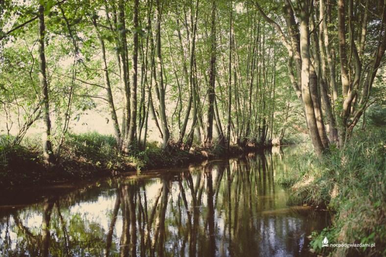 Jaroszówka - Dolina Czarnej Wody