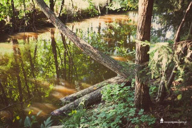Dolina_czarnej_wody_rzeka (25 of 32)