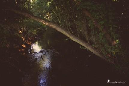 Dolina_czarnej_wody_rzeka (32 of 32)