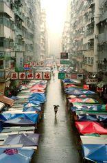 ©Thomas Chan Hong Kong