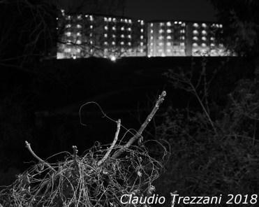 mar 24 2019Claudio Trezzani_28
