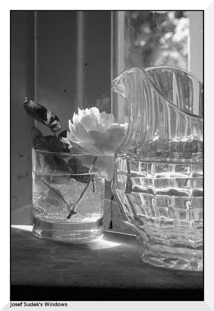 © Giorgio Rossi. Piccola Fotografia Domestica. Fotografia a chilometro zero.