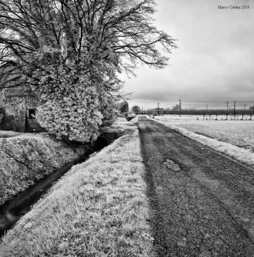 M_Cavina_Biogon_Leica12
