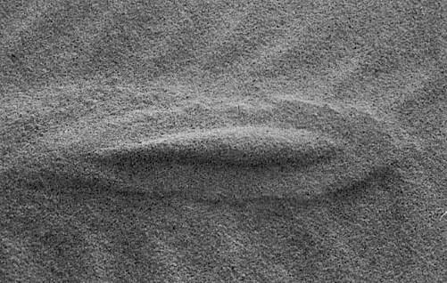 L'orma sulla sabbia – Un gioiello firmato da Daniela Brau. Passeggiando sull'arenile ha visto questa forma ellittica modellata dal vento su qualcosa che giaceva sulla battigia. Questa immagine è rigorosamente monocromatica, e documenta come dal niente possa originare un qualcosa di raffinata fattura.