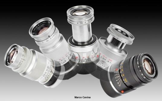 M_Cavina_Canon_100_Macro19